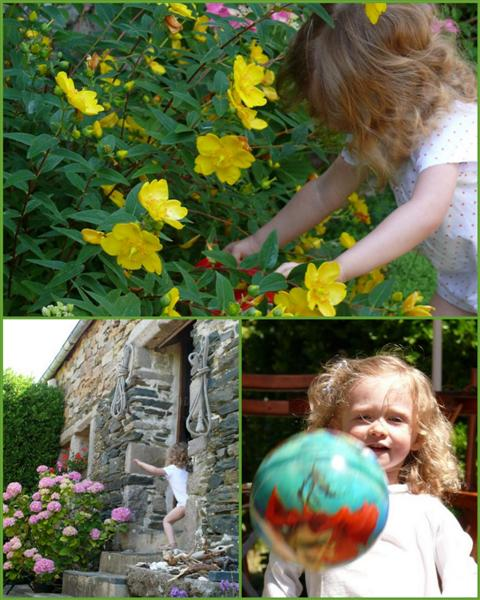 jardinmedium.jpg
